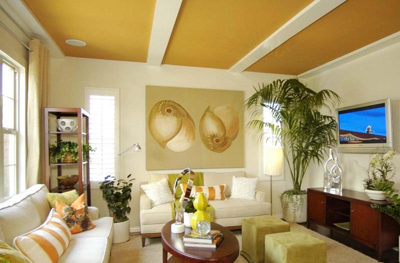 Sơn trần nhà màu vàng