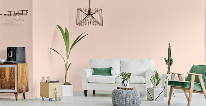 Sơn màu hồng cam cho nội thất